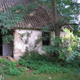 Jest taki domek w lesie...