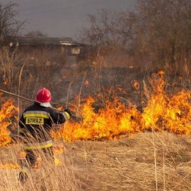 Wypalanie traw – zagrożenia i kary!