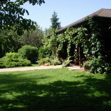 EDEN! -  mój ogród