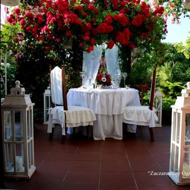 """Róże w """"Zaczarowanym Ogrodzie Magnolii"""""""