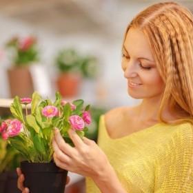 Wiosenny balkon – jakie kwiaty wybrać?