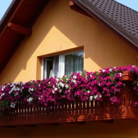 ogród i dom