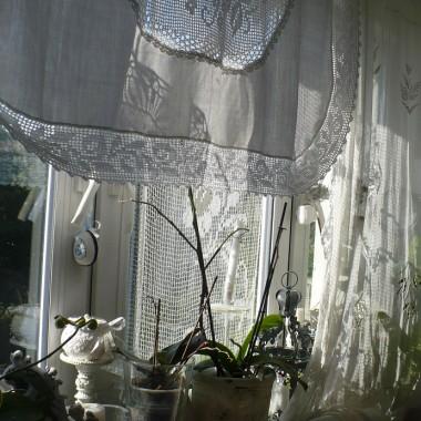 ...............i słonko na oknie...............