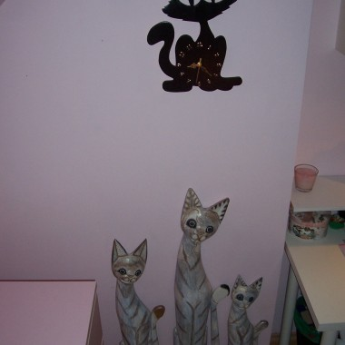 kotki w roli głównej