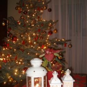 Nowy Rok .....wierzę, że szczęśliwy będzie :-)