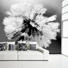 Czarno-białe dekoracje do Twojego domu