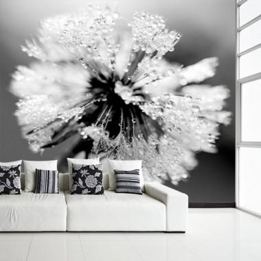 Fototapeta z motywem dmuchawca, świetna do dużych przestrzeni w Twoim domu.