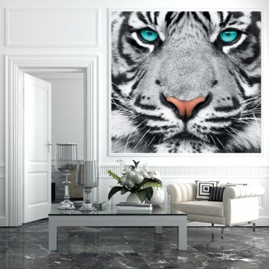 Czarno-biały tygrys o turkusowych oczach w formie fototapety na ścianę.