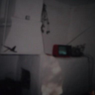 nasyępne zdjęcia