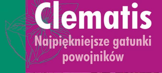 Clematis. Najpiękniejsze gatunki powojników