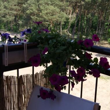 Zapraszam na balkon