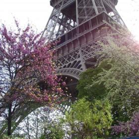 Wiosna w ogrodach paryskich.