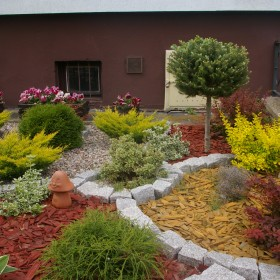 ogród taras