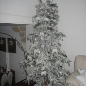 Boze Narodzenie 2009