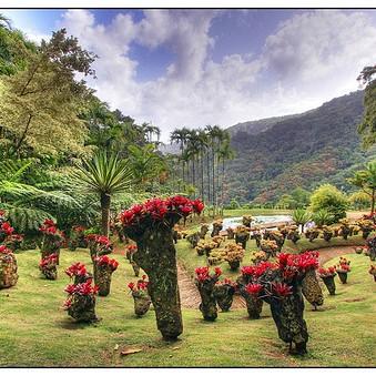Takie ogrody to mogą się tylko przyśnić :) i życzę Wam tego, nie tylko w snach.