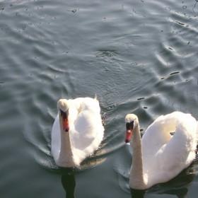 Moja kochana Gdynia:)