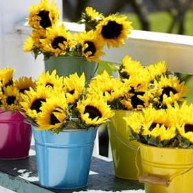 Wiadro ze słonecznikami :-)