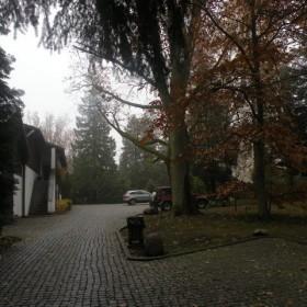 Aboretrum w Wirtach dla parkowych szwędaczy.