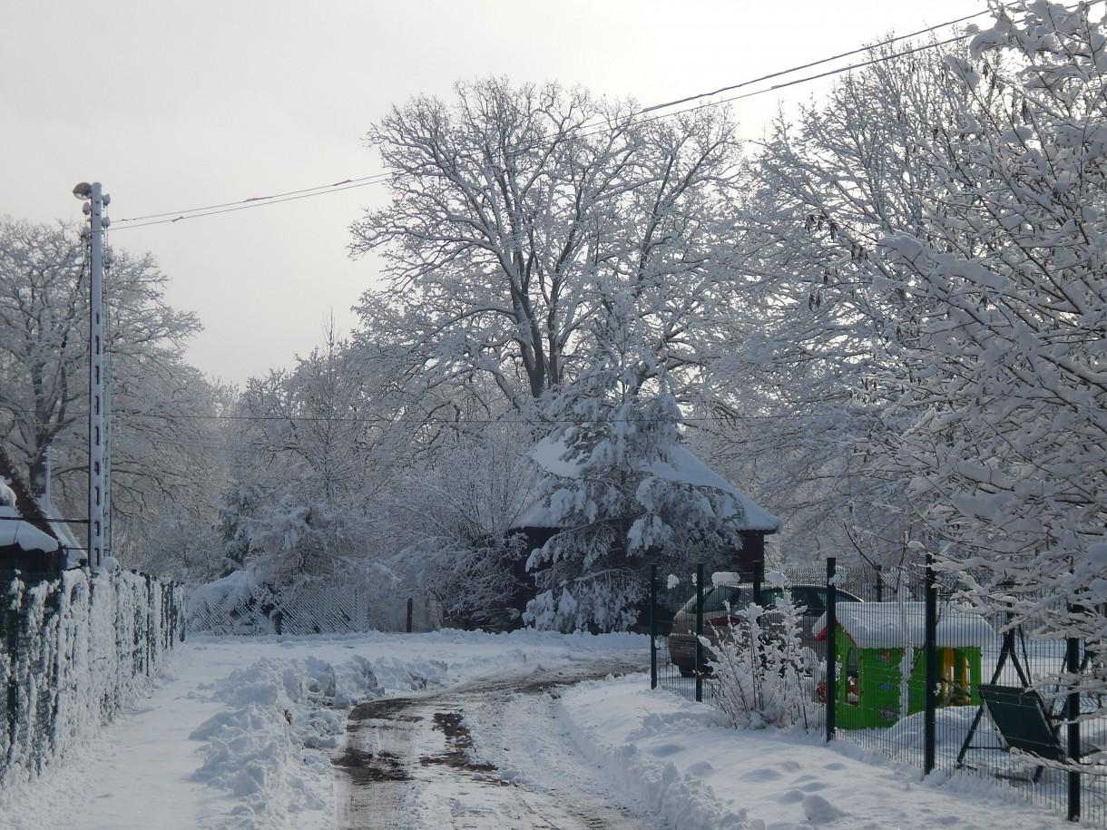 Leśne klimaty, ZIMOWA BAJKA  :)