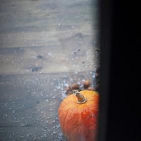 jesień widziana z okien mojego domu ....