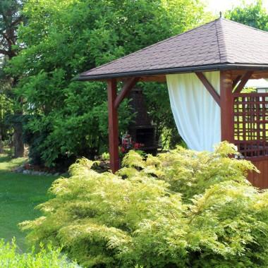 Kolory czerwca w ewooniowym ogrodzie :)