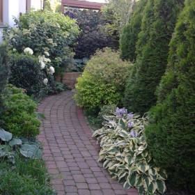 lipiec w ogrodzie