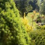 Realizacje, wiosna w pełni - wiosenna odsłona mojego miejsca świecie, nie ma końca zmian..