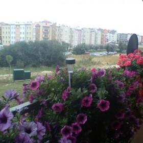 Wiosna na naszym balkonie