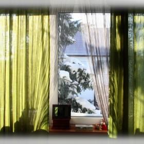 Zielony pokój...