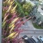 Balkon, balkon w jesiennej odslonie