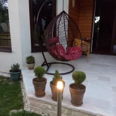 wieczorową porą i...nowa roślinka...