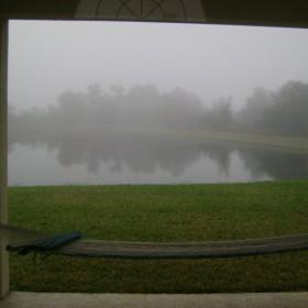 zimowy widok z okna