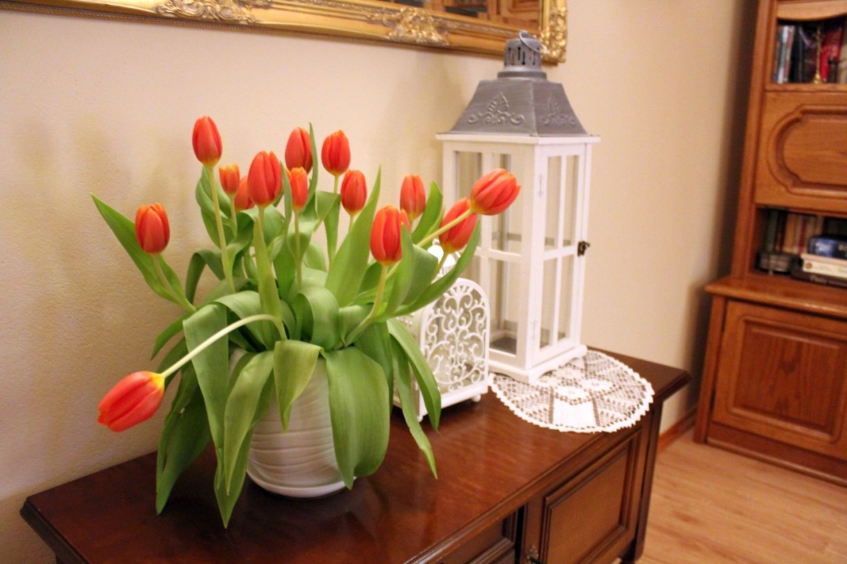 Dekoracje, Tulipanowa niedziela :)