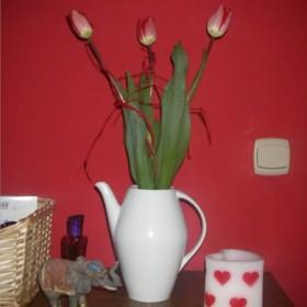 tulipanki walentynkowe