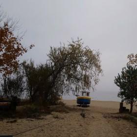 Listopadowa mgła.........