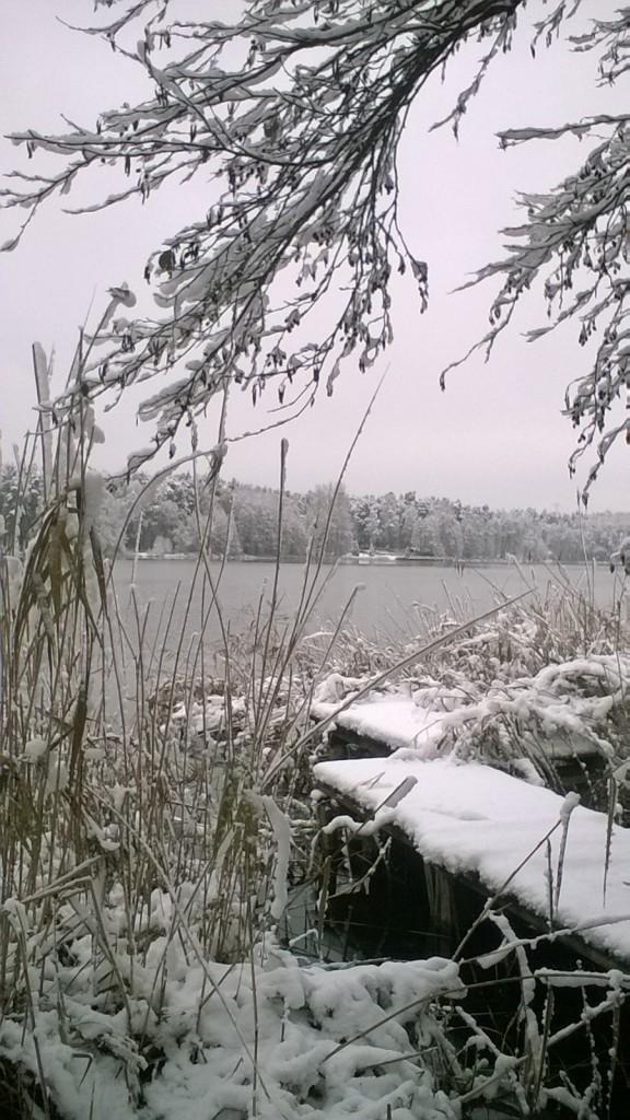 Ogród, Działka w zimowej odsłonie
