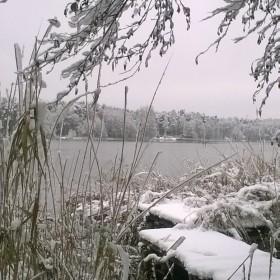 Działka w zimowej odsłonie