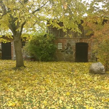 Jesień w moim ogrodzie /tarasie.