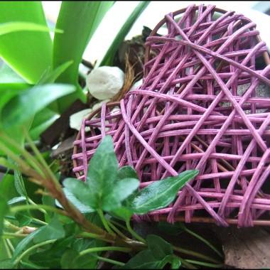 lato w pełni!słonce, kwitnące rośliny w tym moja ulubiona lawenda...