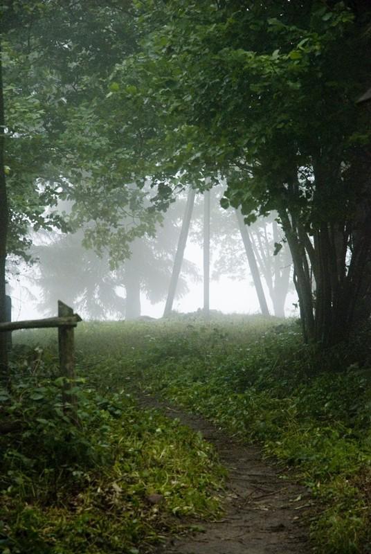 Dekoracje, FOTO_Dylewska góra we mgle