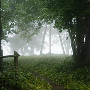 Dylewska Góra (312 m n.p.m) - najwyższe wzniesienie Warmii i MazurWzniesienie na MAzurach najwyższe...a tu co? - mgła!No cóż...za dużo to my z tej góry nie zobaczyliśmy hehe ...ale mgła i tak dla mnie zachwycająca :)koniec lipca 2011r.