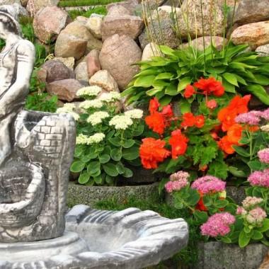 fontanna na tle innych kwiatów