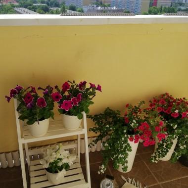 Chce się pochwalić moim balkonem...