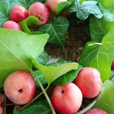 .............i rajskie jabłuszka we wianku............