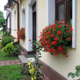 Wiejski ogródek
