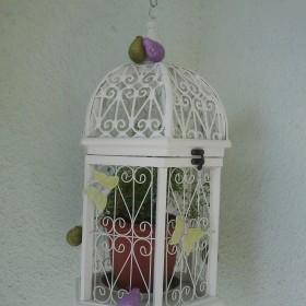 mój balkon w sierpniu