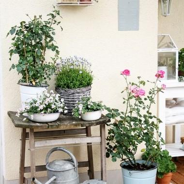 Ogrody,balkony ,tarasy.....