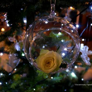 świąteczne zyczenia