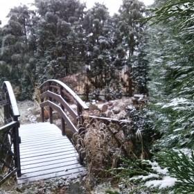 Nareszcie Snieg!!!