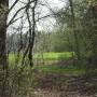 Leśne klimaty, SPOTKANIA Z NATURĄ...